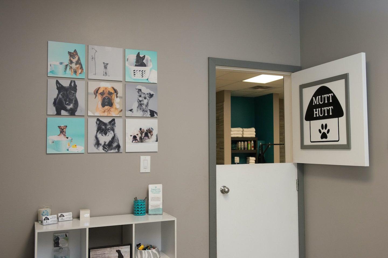 mutt_hutt_dog_cat_pet_grooming_saskatoon-1